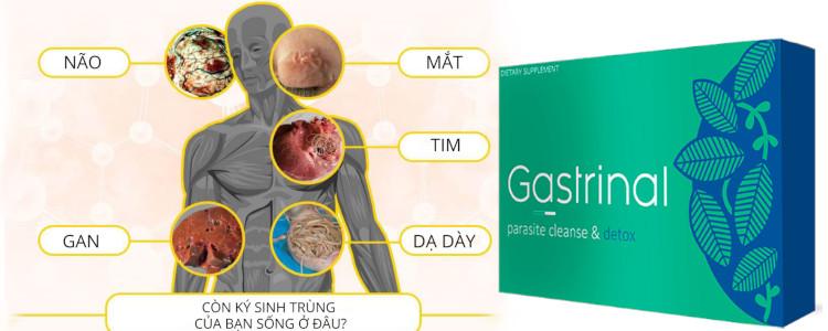 Mất bao lâu để thấy tác dụng của Gastrinal?